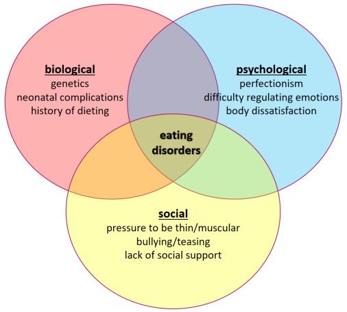 eatingbiopsychosoc.png